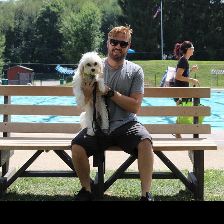 adoptingdogs